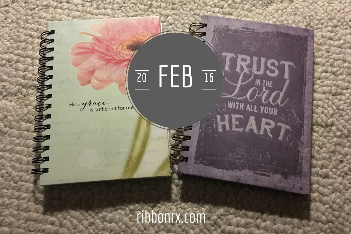 2016, In the Style of Personal Journals: February