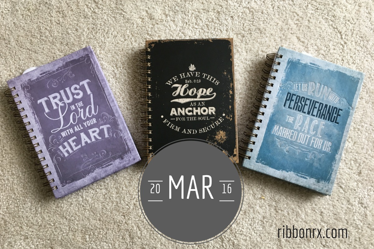 2016, In the Style of Personal Journals: March
